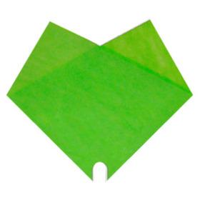Sleeve Doublé Uni 40x40cm green