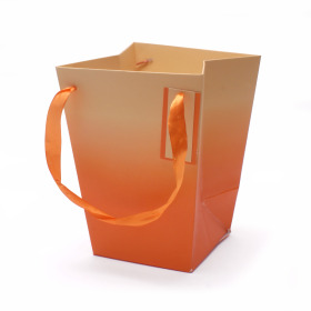 Carrybag Basic 15/15x11/11x20cm orange