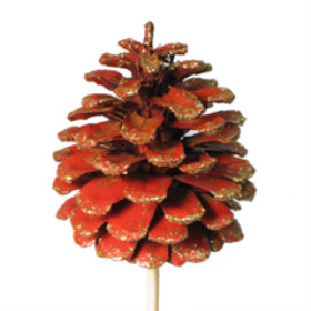 Xmas Pinecone 2.75 in on 20 in stick red/gold glitter