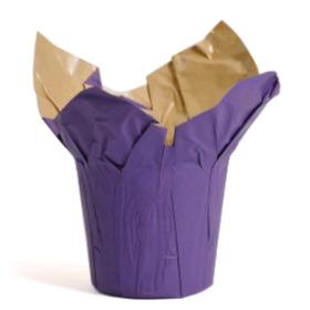 Cover-Ups Kraft 4.5 in purple