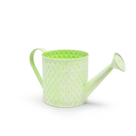 Zinc Watering can Diamond ES10.5 washed green