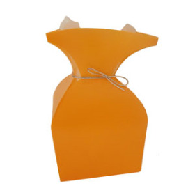Aquatico PP Vase orange
