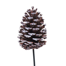 Xmas Pinecone 4in on 20in stick natural with white tips