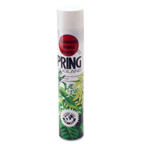 Leaf shine Spring 750ml