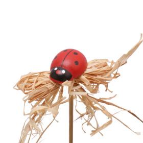 Ladybird Raf 3cm on 10cm stick red