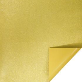Glitter & Glamour 24x24in gold H3