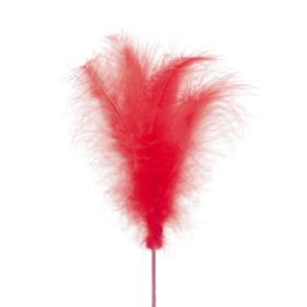 Feather 14cm on 50cm stick red