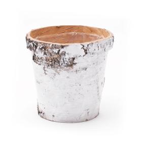 Pot Birch ES12