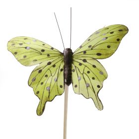 4200928 Butterfly Tropicana 8cm on 50cm stick green