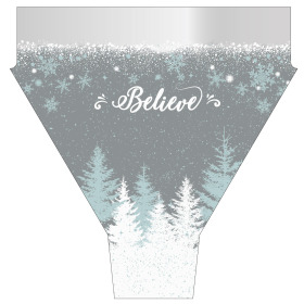 Believe F/C 17 in Sleeve Silver Teal