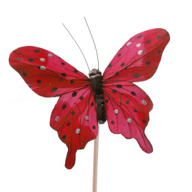 Butterfly Tropicana 8cm op 50cm stick red
