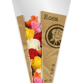 Sleeve Monoline Rosa 60x35x12cm