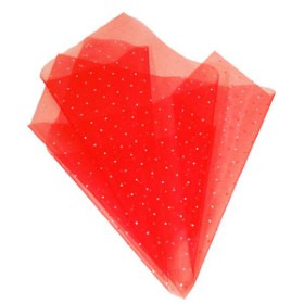 Organza Jewel 20x28 in red with hole