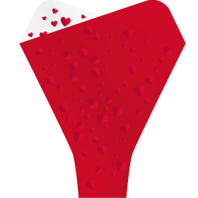 Hoes Doublé Flying Hearts 54x44x12cm rood