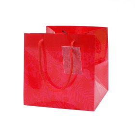 Carrybag Jungle 16x16x16cm red