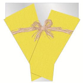 Raff 21x17x5 in yellow