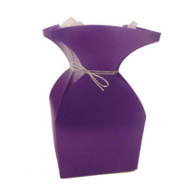 aquatico Pp Vase purple