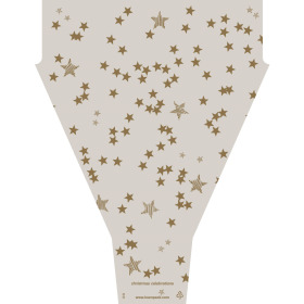 Hoes Christmas Celebrations 50x35x10cm taupe