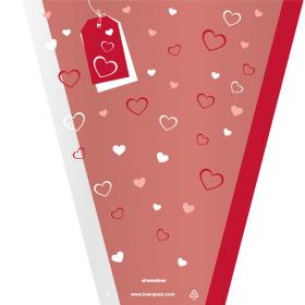 Sleeve Dreamlove 40x30x12cm red