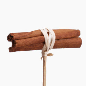 Cinnamon bundle natural 3 in on 20 in stick