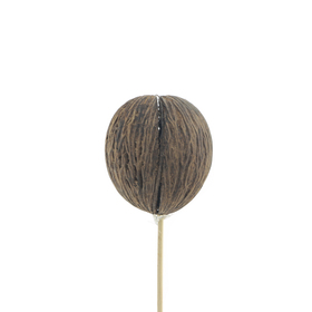 Mintolla ball 8-9cm op 50cm stok