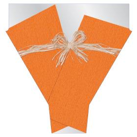 Raff 21x17x5 in orange