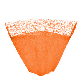 Sleeve Nonwoven Deluxe Top 40x50x19cm orange