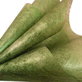 AURORA 20X28 IN GREEN + HOLE