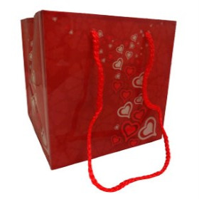 Carrybag Blooming Love 6.25x6.25x6.25 in red