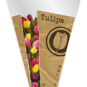 Sleeve Monoline Tulipa 40x30x12cm