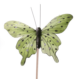 Butterfly Tropicana 8cm on 50cm stick green