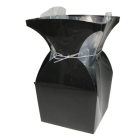 aquatico Pp Vase black