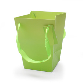 Carrybag Basic 15/15x11/11x20cm green