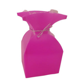 aquatico Pp Vase hot pink