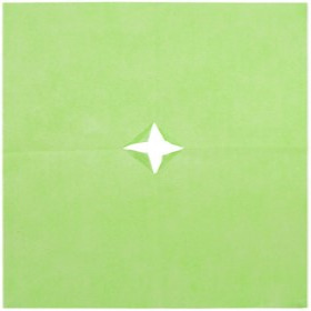 Nonwoven 20x28in lime green + x