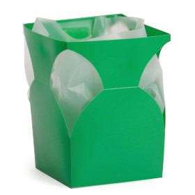 Aquatico small green