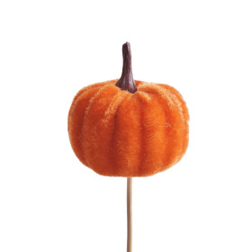 Velvet Pumpkin 5cm on 10cm stick orange