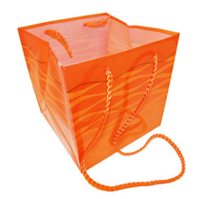 Carrybag Serenity 6.25x6.25x6.25 in orange