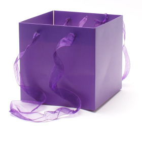 Carrybag Glossy 16x16x16cm purple