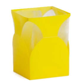 Aquatico small yellow