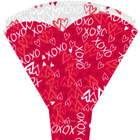 xoxo 21x17x5 in red