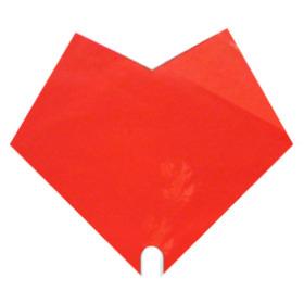 Hoes Doublé Uni 35x35cm rood