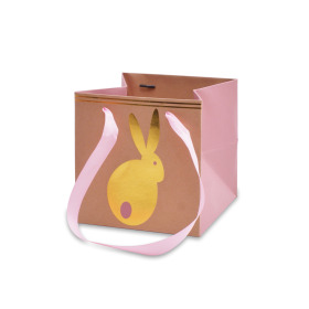 Carrybag Bunny Hop 6x6x6 in pink