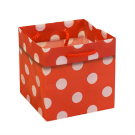 CARRYBAG POLKA DOTS 5X5X5 IN RED
