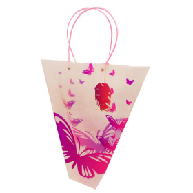 Carrybag Butterfly 18x14x5 in