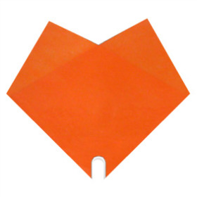 Sleeve Doublé Uni 40x40cm orange
