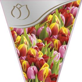 Sleeve Golden Tulip 40x25x10cm
