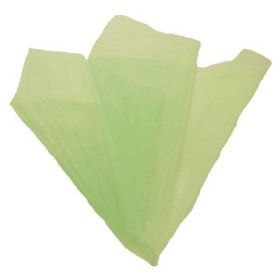 Organza 20x28 in light green with 3 in hole