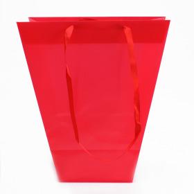 Draagtas Uni 24/11x12/11x26cm rood