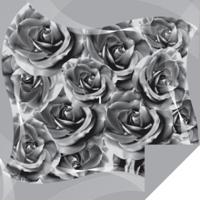 Swirl rose Sheet 24x24 in white